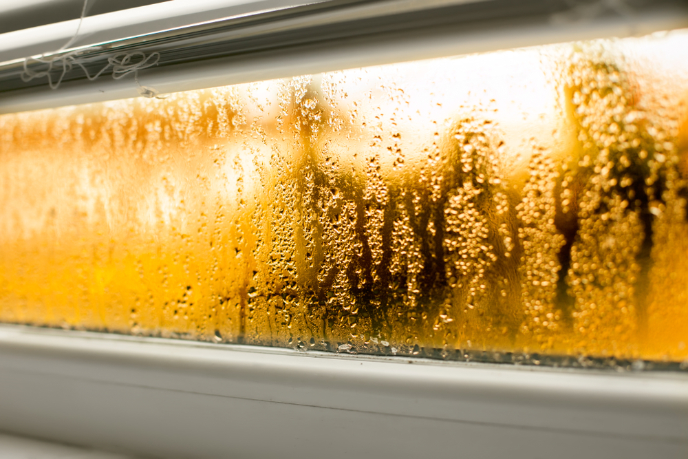 Is Water in the Track of Your New Windows Freaking You Out?