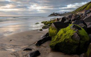 Carlsbad beach - Tex-Cote in Carlsbad